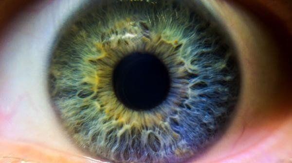 Los tratamientos de prevención primordiales para no perder la visión