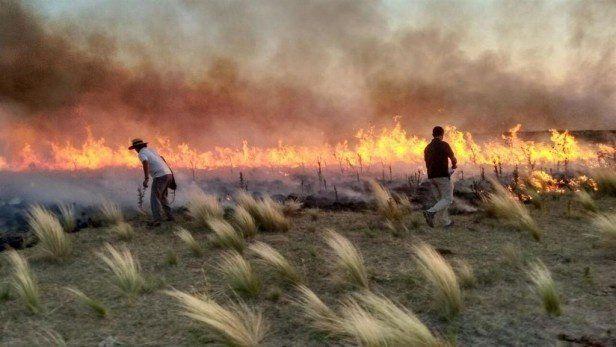 La Pampa: 963.016 hectáreas quemadas y pérdidas por más de $1000 millones