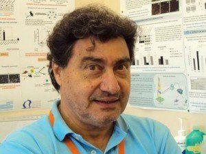 Un médico argentino fue premiado en Francia por sus avances contra el cáncer de páncreas