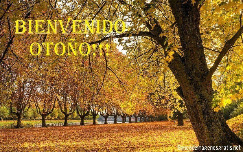 Comenzó el otoño