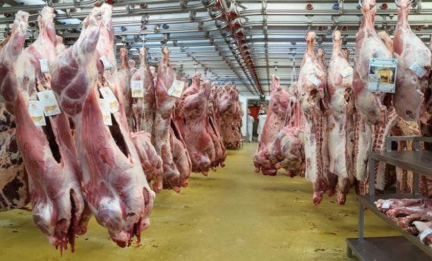 Exportaciones de carne vacuna crecieron 34% en 2017