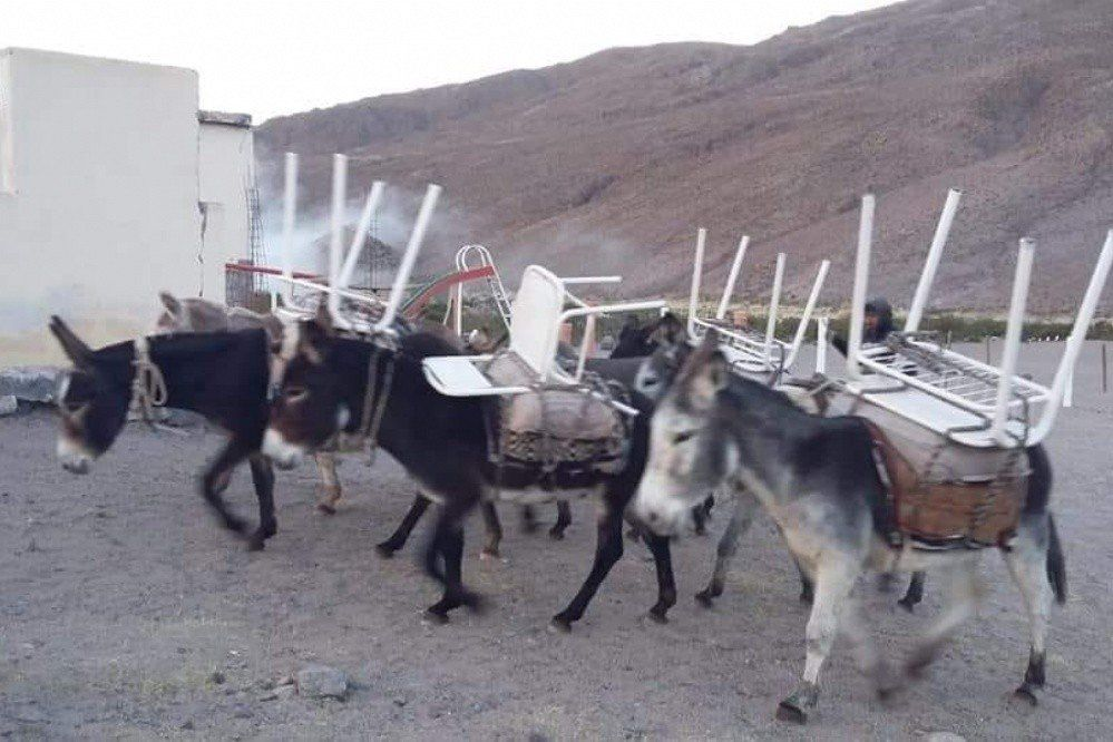 Una escuela catamarqueña recibió donaciones a lomo de burros