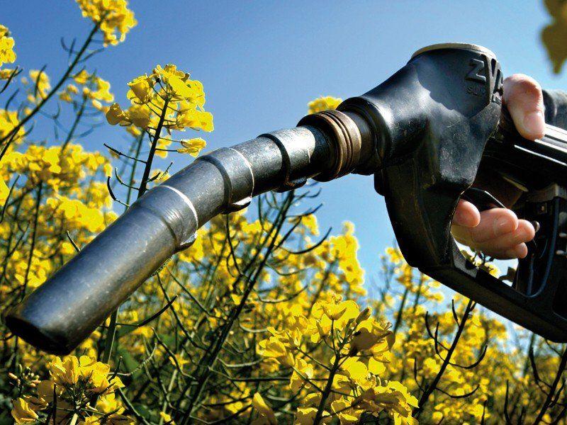 El Gobierno aumentó el precio del biodiésel y tendría impacto en el valor del gasoil