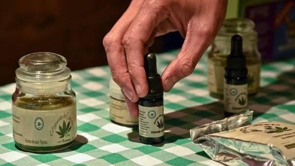 Cannabis medicinal: Una alternativa cada vez más valorada frente a enfermedades