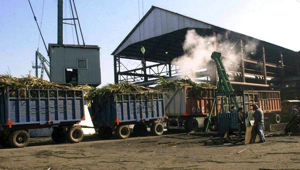 Zafra 2018: Es un año crítico con productores cañeros perjudicados