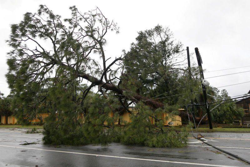 Confirmaron la muerte de dos personas por el huracán Michael