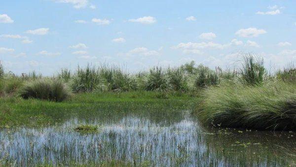 El Gobierno promulgó la ley que crea un nuevo parque nacional y otras normas