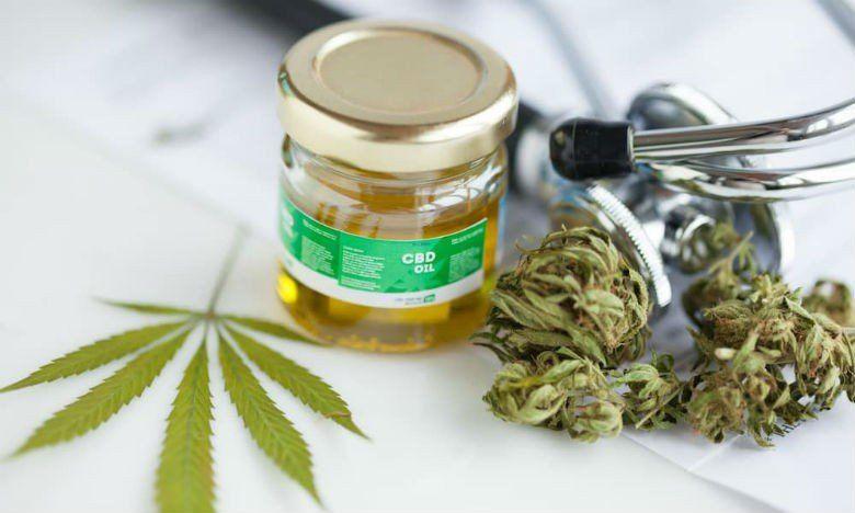 Jujuy desarrollará la granja de cultivo de cannabis más grande del planeta
