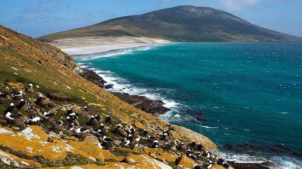 Acuerdan un segundo vuelo comercial entre Malvinas y el continente