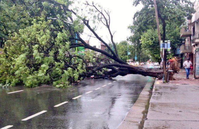 La tormenta de anoche dejó evacuados y anegados en el este y noreste de la provincia