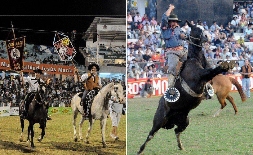 Organizaciones marcharán para pedir la eliminación de caballos de los espectáculos folklóricos
