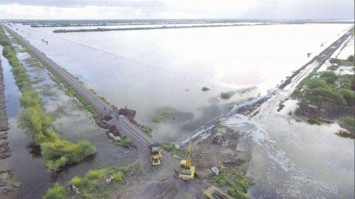 Estiman que por lluvias e inundaciones se perdió el 9% del área productiva de soja