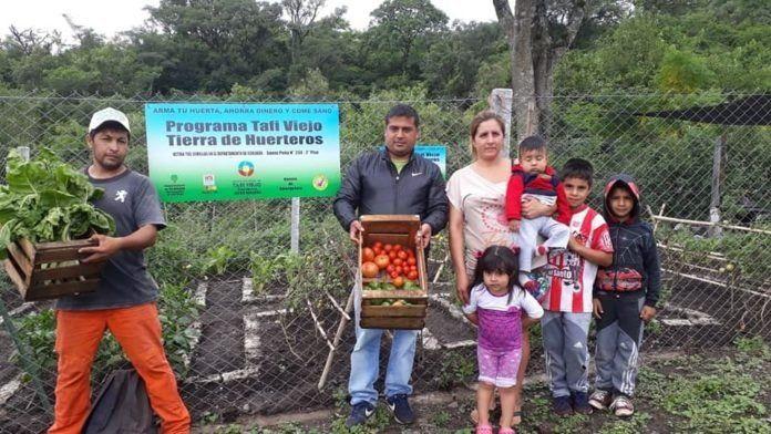 'Tafí Viejo, Tierra de Huerteros': capacita a los ciudadanos en la creación de huertas hogareñas