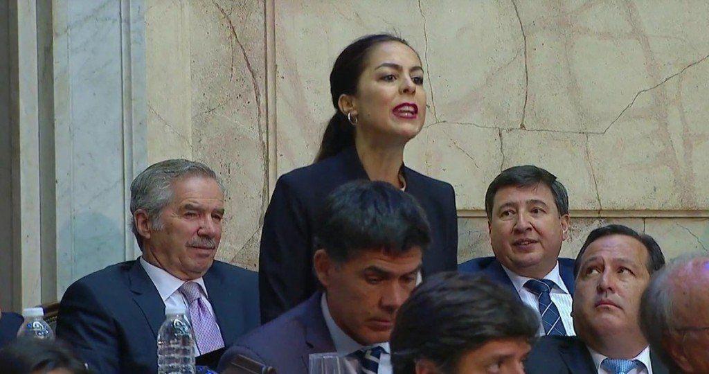 Joanna Picetti apareció en el Congreso e increpó a Macri