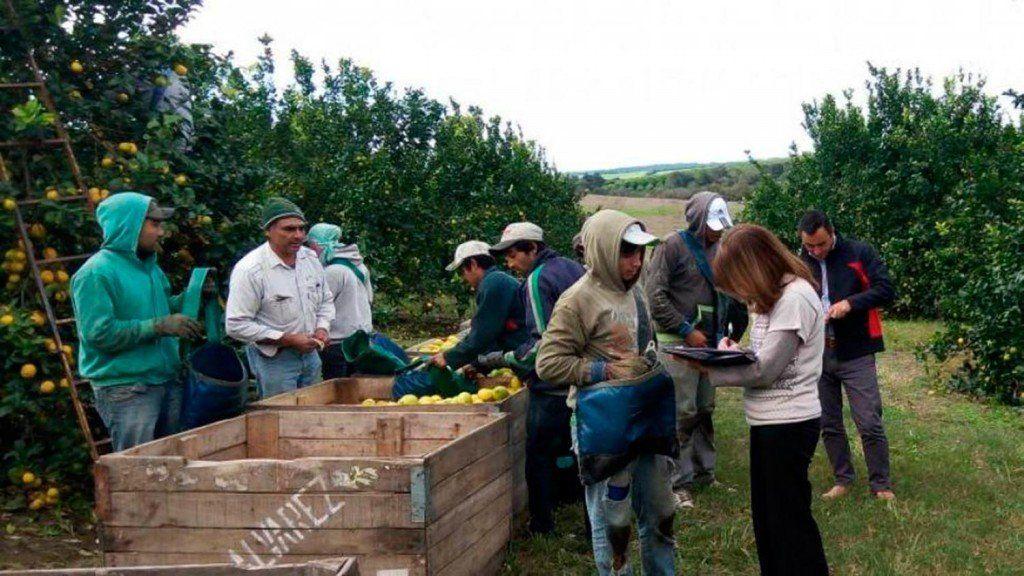 Trabajadores rurales acordaron una suba salarial del 47,7%