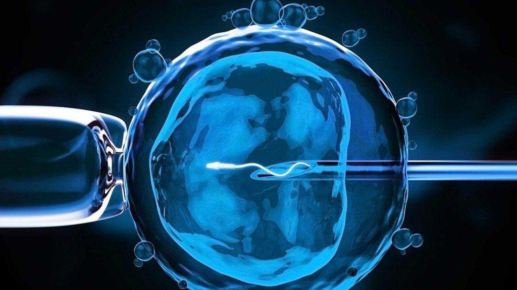 Una clínica de fertilización de la India es investigada por tráfico de embriones humanos