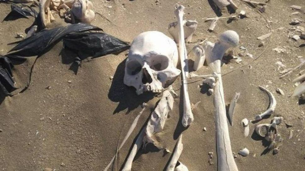Santiago del Estero: encontraron huesos humanos en un canal