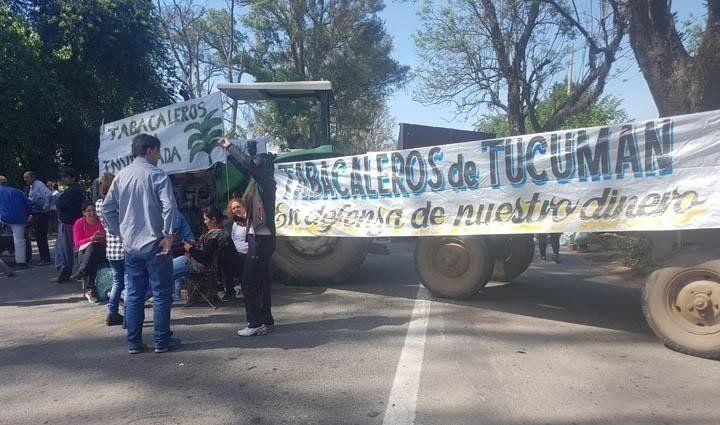 Productores tabacaleros protestarán en plaza Independencia