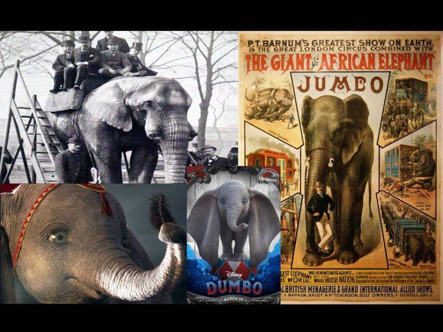 Conocé la verdadera historia del elefante que inspiró a la producción de Dumbo, la película de Disney