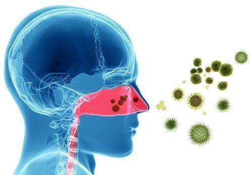 Para 2050, la mitad de la población tendrá algún tipo de alergia
