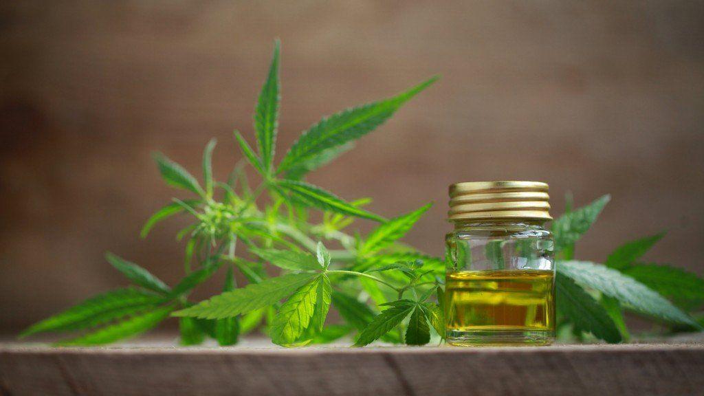Prohibieron a una mujer el autocultivo de cannabis para tratar a su hijo