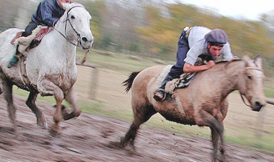 Resultado de imagen para carreras cuadreras de caballos