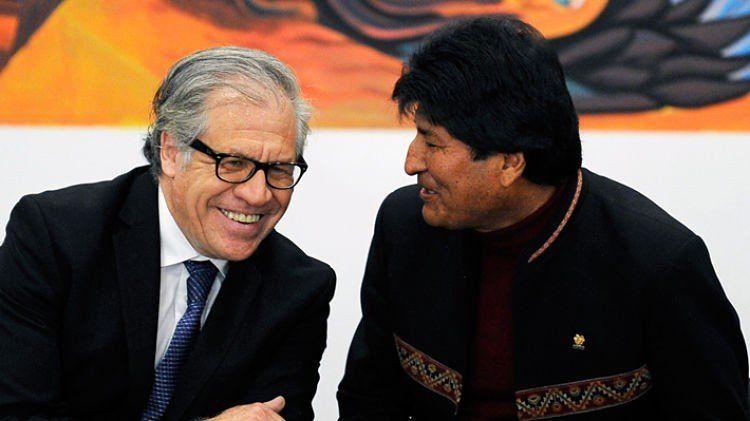 Luis Almagro defendió la posible candidatura de Evo Morales