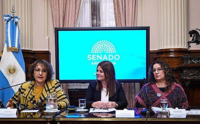 Debatieron en el Senado sobre el rol del Estado frente al abuso sexual infantil