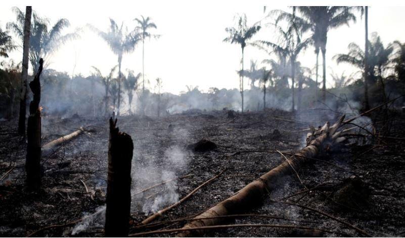 La respuesta que divide a Brasil: cuál es la principal causa de los incendios