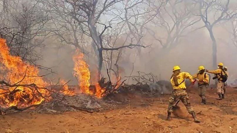 El fuego afecta áreas protegidas de bosques en Bolivia