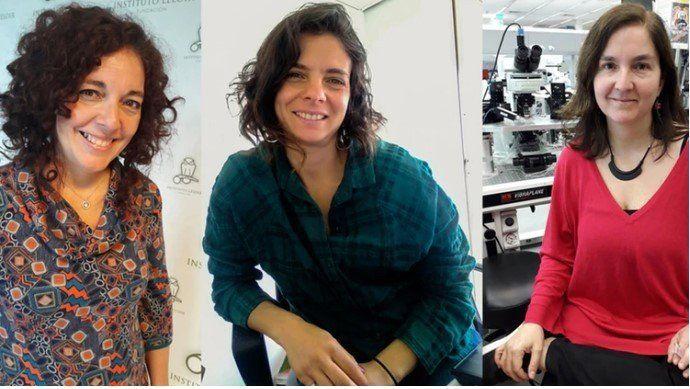 Tres científicas argentinas ganaron un prestigioso premio internacional por sus estudios en cáncer y memoria
