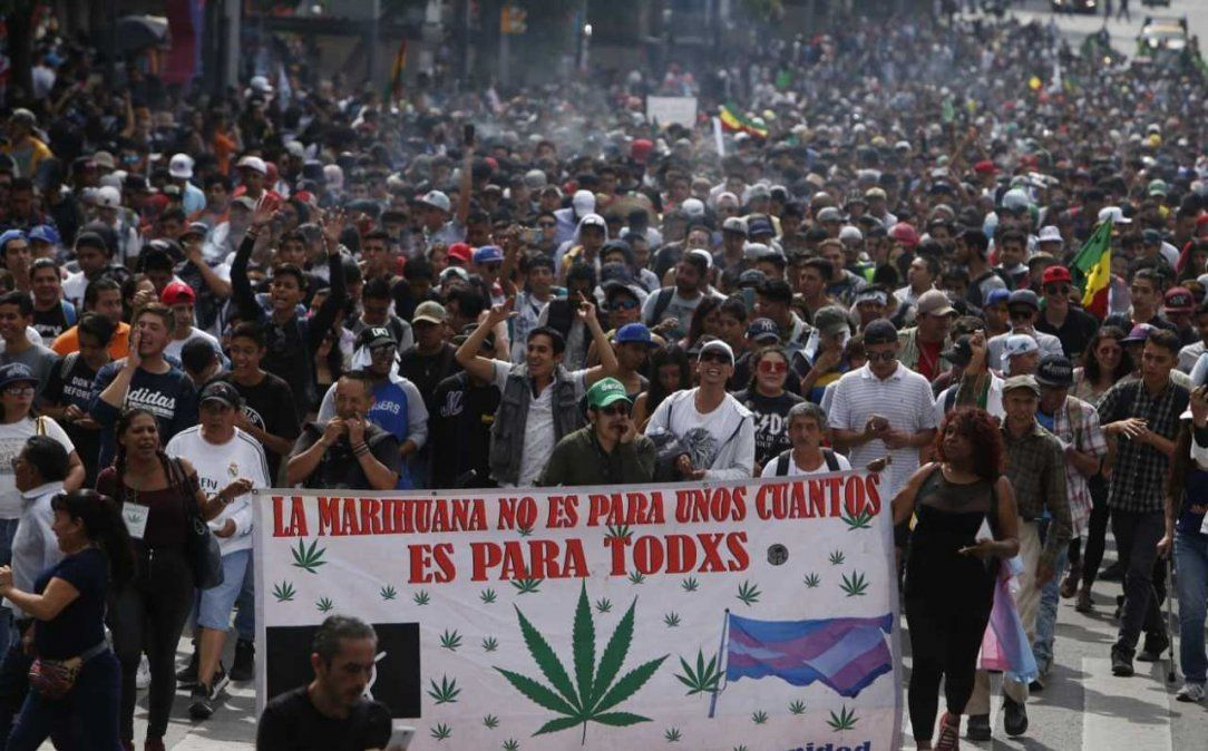 Los asistentes reunirán firmas para pedir el uso personal de la mariguana.