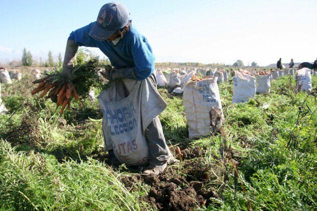 Trabajadores rurales cobran el Bono de $5000