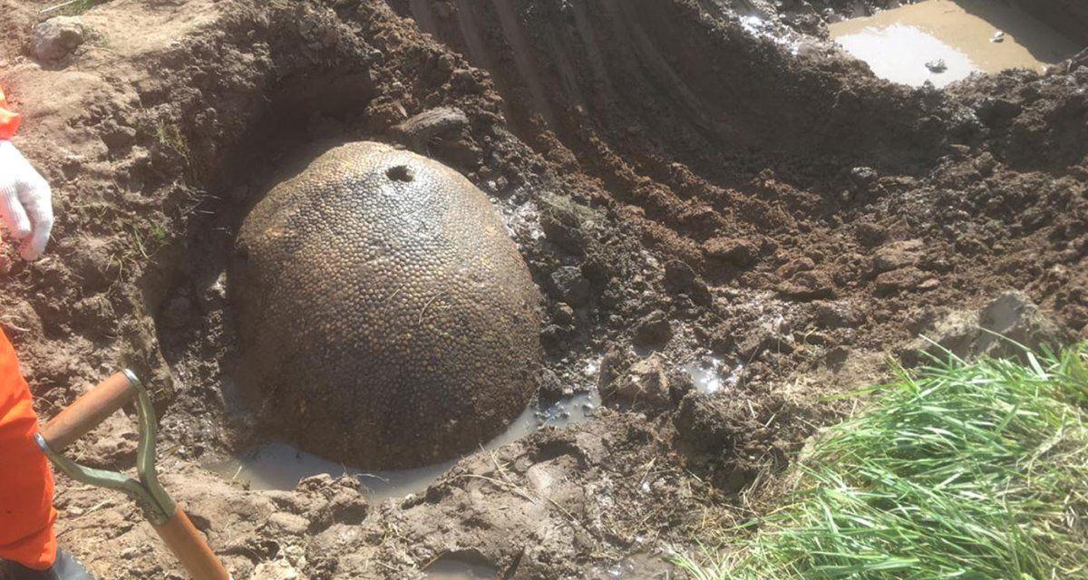 Rescataron los restos del gliptodonte hallado en Ezeiza