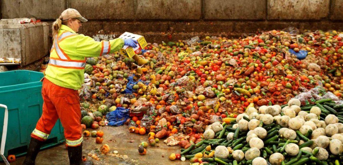 Desperdiciar menos comida