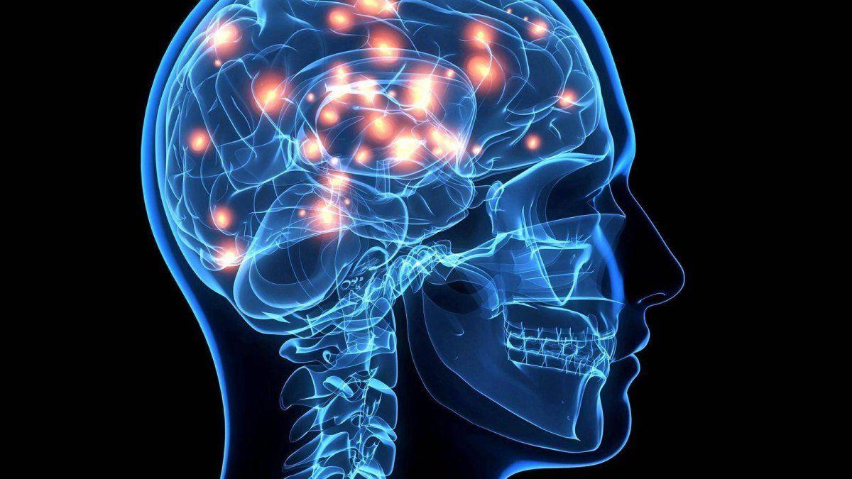 ¿Se puede manipular la memoria?