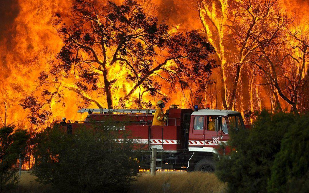 Los incendios arrasan más de medio millón de hectáreas en Australia
