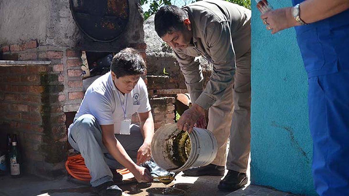 En Tucumán no hay casos de Dengue, Chicungunya o Zika