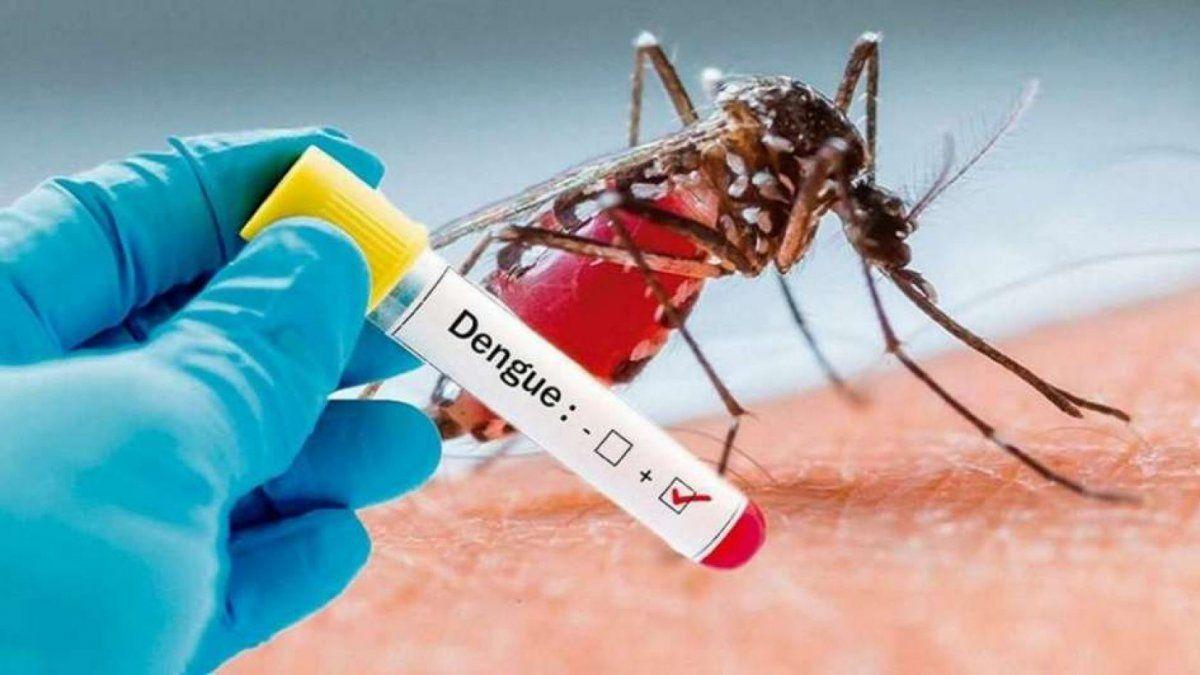 El total de casos de dengue en Tucumán ascendió a 5457