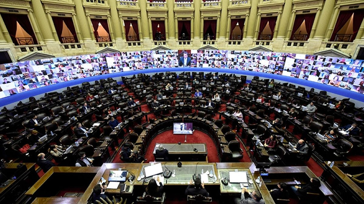 Diputados: los temas a tratar de forma remota esta semana