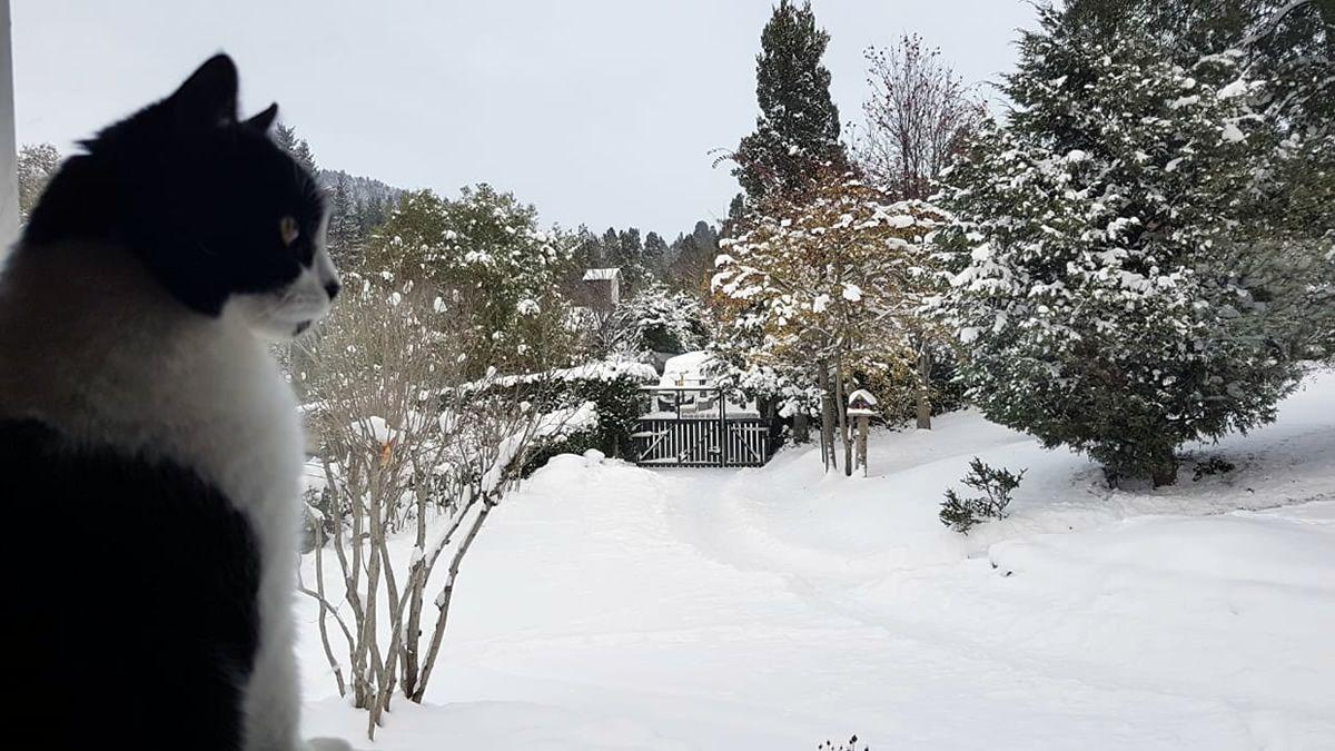 Bariloche: nevó durante casi tres días seguidos