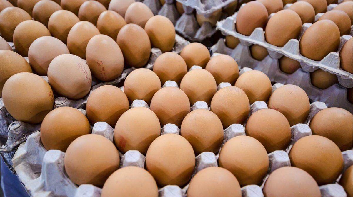 Productores avícolas advierten que el congelamiento de precios impacta fuertemente