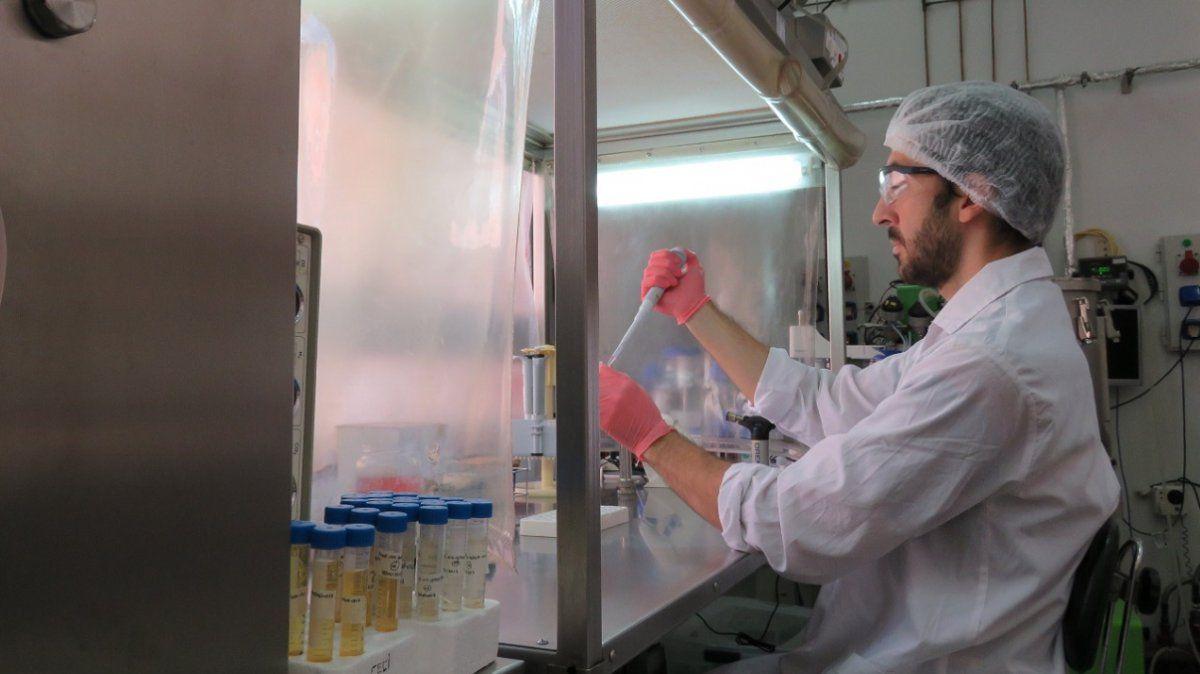 Coronavirus: récord de muertes en Argentina, con 52
