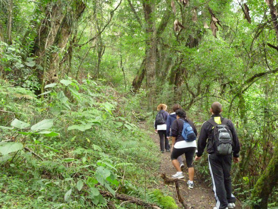 Continúan habilitados los senderos del Parque Sierra de San Javier