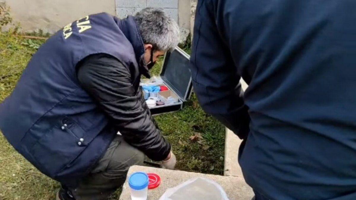 Un joven cortaba el pasto y encontró un pene en un frasco