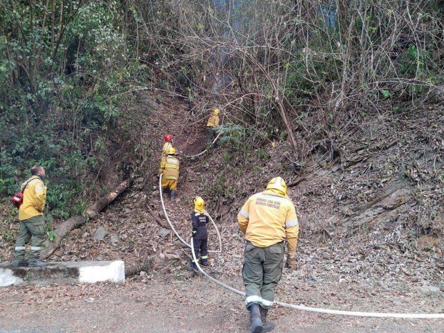Continúan hoy las tareas en el cerro San Javier