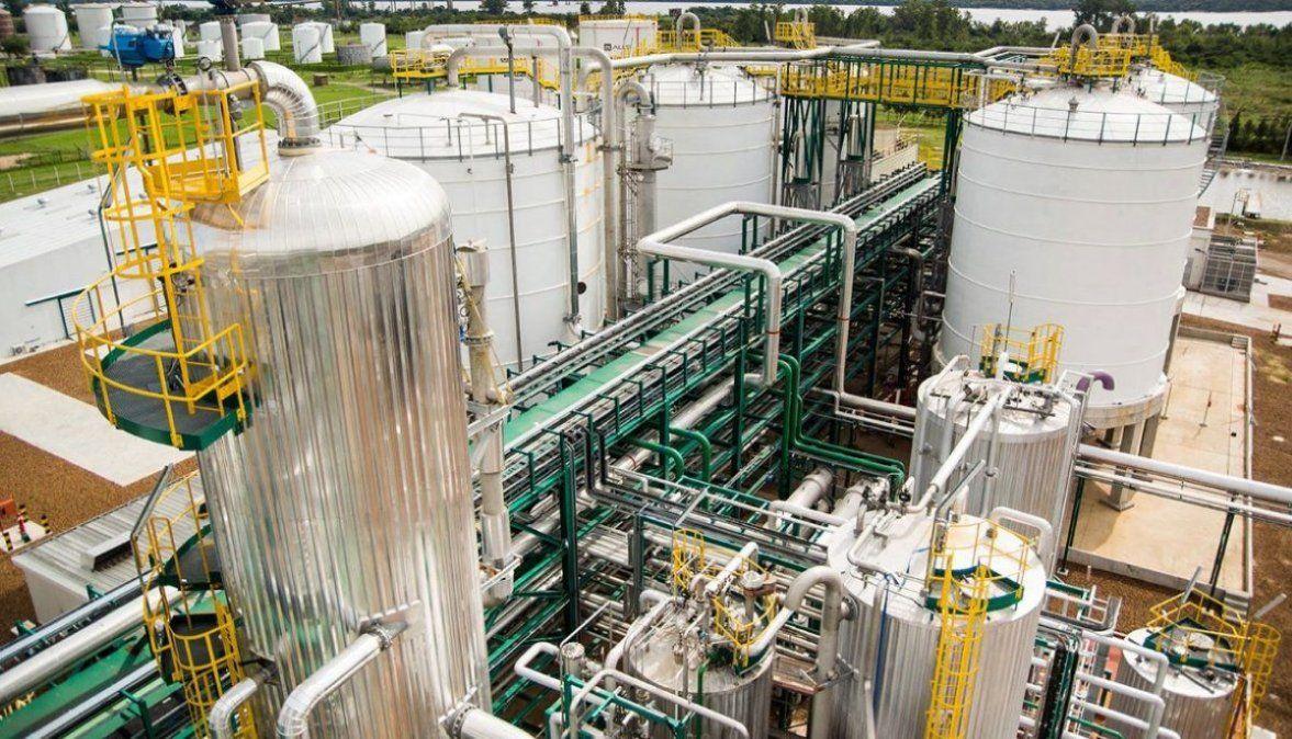 CARBIO pidió una prórroga corta de la ley de biocombustibles