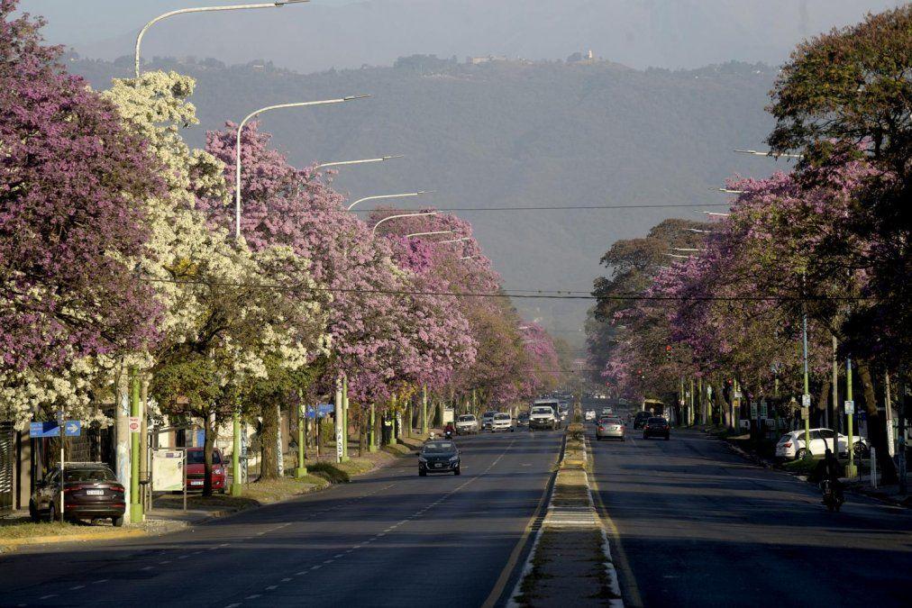 Baja la temperatura y hay probabilidad de lluvias en Tucumán