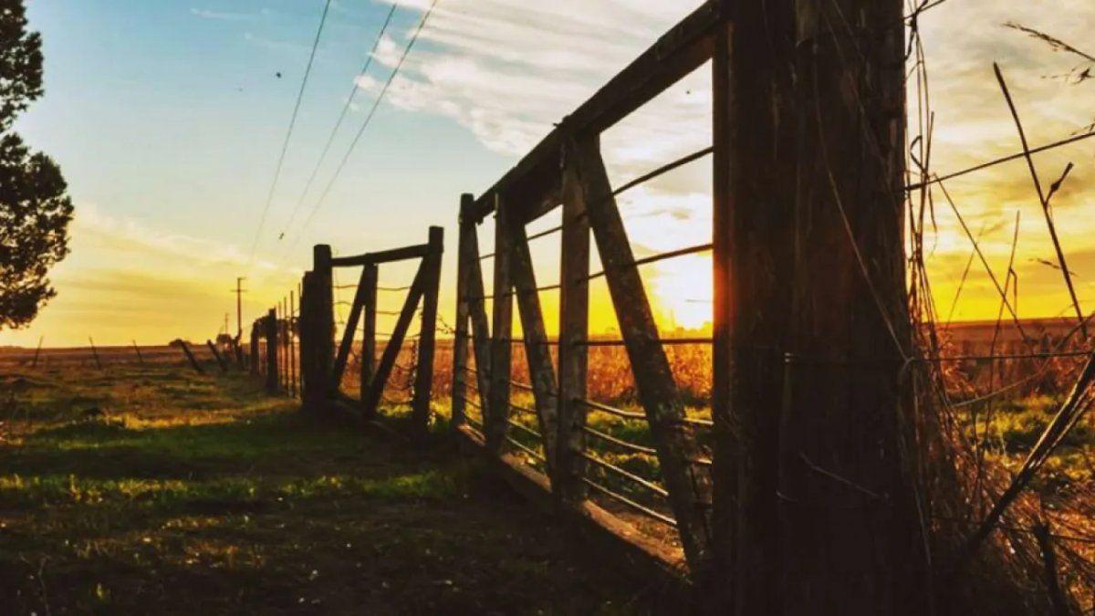 Campo: cayó 8,7% el mercado inmobiliario rural en febrero