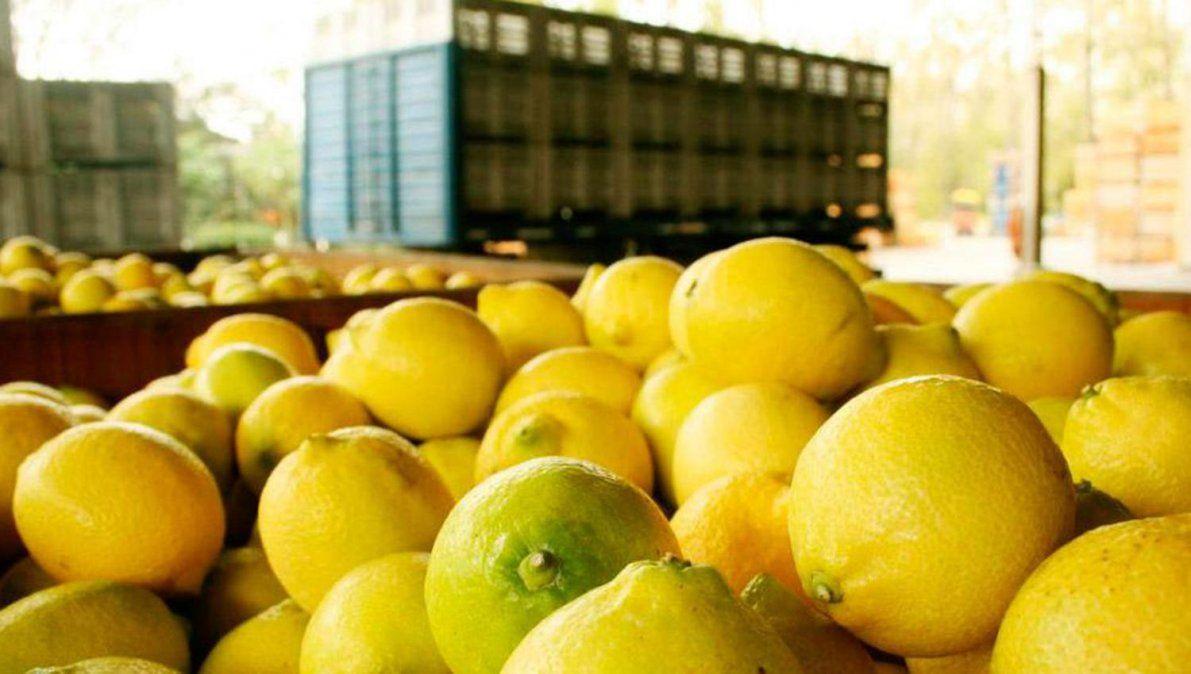 Tucumán fue incluída en la emergencia citrícola